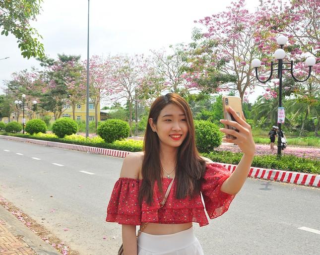 Con đường hoa kèn hồng ở miền Tây lung linh như phim Hàn thu hút giới trẻ ảnh 6