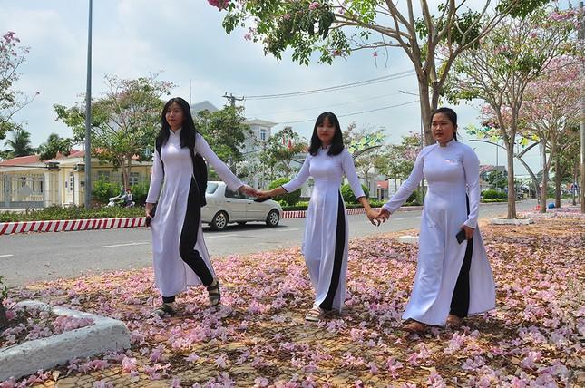 Con đường hoa kèn hồng ở miền Tây lung linh như phim Hàn thu hút giới trẻ ảnh 1