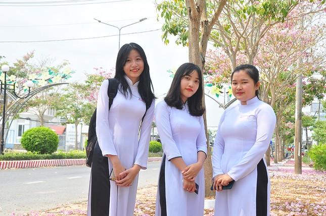 Con đường hoa kèn hồng ở miền Tây lung linh như phim Hàn thu hút giới trẻ ảnh 2
