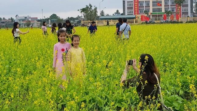 Rực rỡ cánh đồng hoa cải giữa lòng thành phố Thanh Hóa ảnh 3