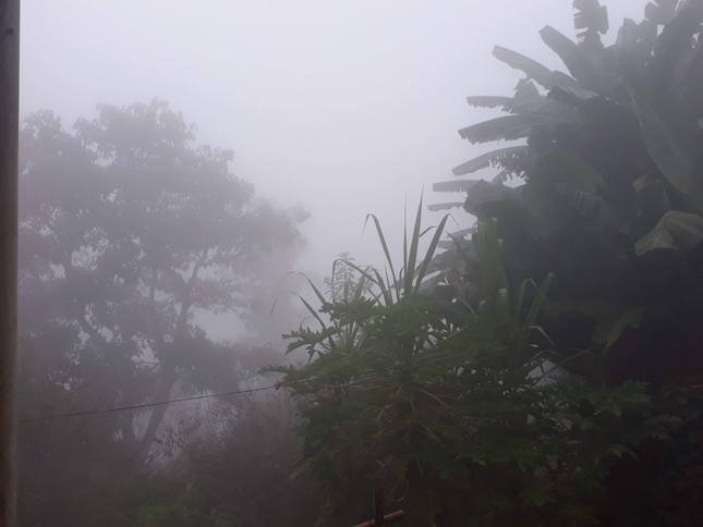 Sương mù bao phủ Mường Lát khiến ngày cũng như đêm ảnh 2