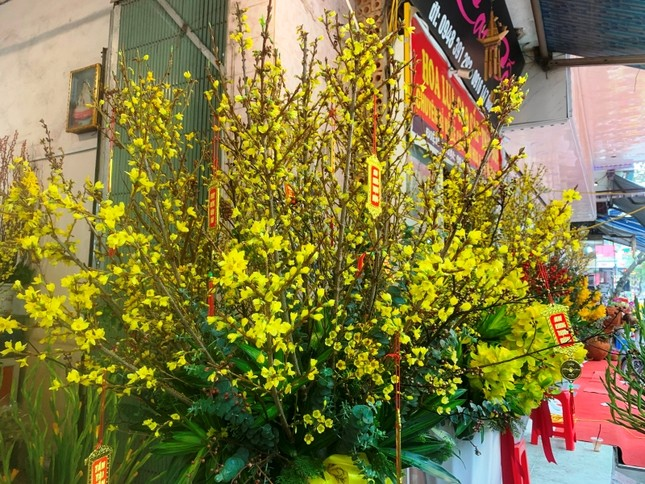 Hoa lạ, hoa giả được săn đón ở Thanh Hóa ảnh 4
