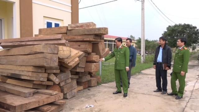 Bắt giữ nhóm phá rừng quy mô lớn ảnh 3