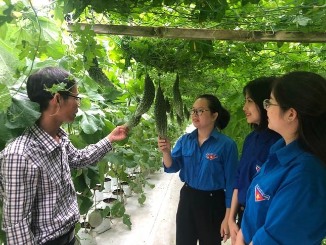 Trung tâm Dịch vụ việc làm Quảng Bình: 20 năm đồng hành cùng thanh niên ảnh 2