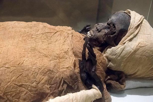 Trưng bày xác ướp 3.000 năm, thổi bùng lo sợ giải phóng lời nguyền của các Pharaoh ảnh 2