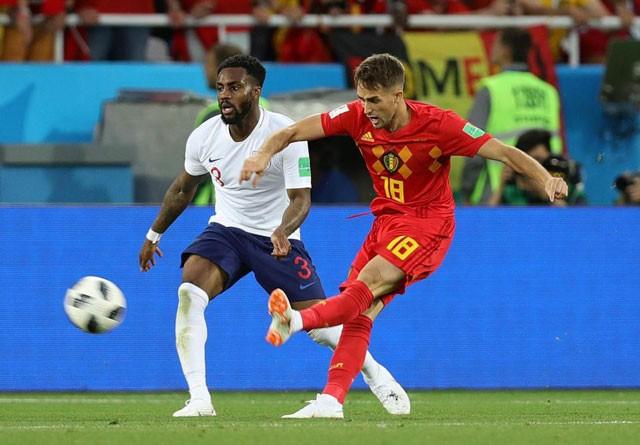 Tuyển thủ Bỉ suýt 'vỡ mặt' vì ăn mừng bàn thắng ảnh 1