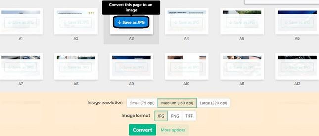 Hướng dẫn chuyển đổi file PDF sang JPG ảnh 4
