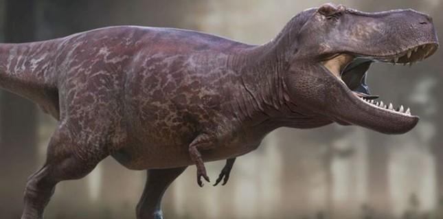 Top 10 sự thật ít người biết về loài khủng long ăn thịt đáng sợ nhất thế giới ảnh 2