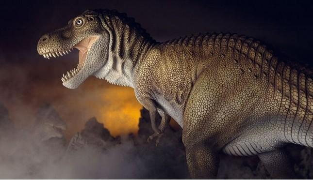Top 10 sự thật ít người biết về loài khủng long ăn thịt đáng sợ nhất thế giới ảnh 3
