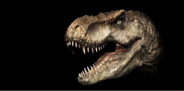 Top 10 sự thật ít người biết về loài khủng long ăn thịt đáng sợ nhất thế giới ảnh 4
