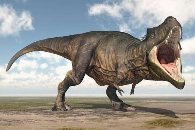 Top 10 sự thật ít người biết về loài khủng long ăn thịt đáng sợ nhất thế giới ảnh 7