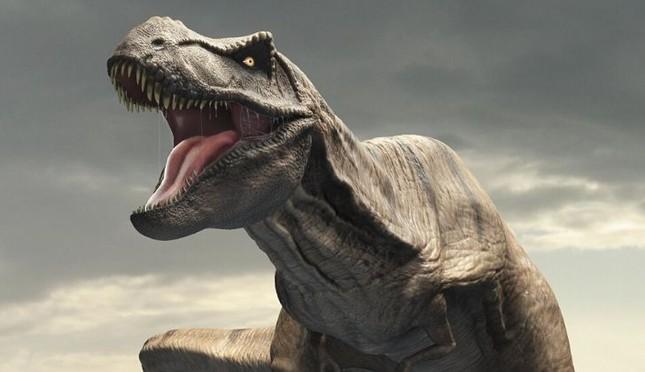 Top 10 sự thật ít người biết về loài khủng long ăn thịt đáng sợ nhất thế giới ảnh 8