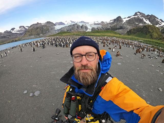 Phát hiện chim cánh cụt màu vàng kỳ lạ, 'hiếm có khó tìm' ảnh 6