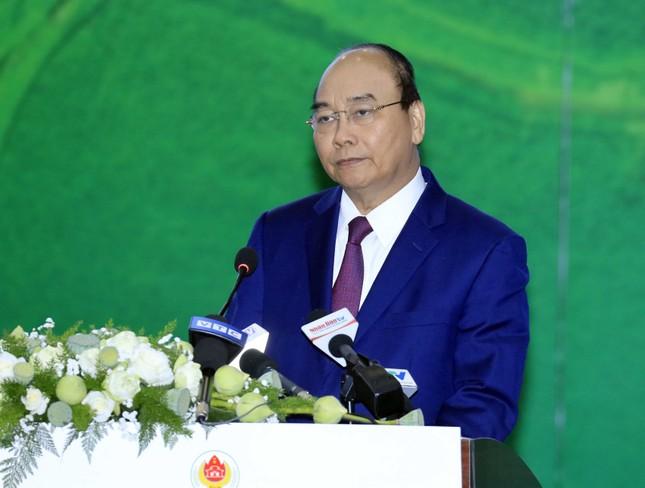 Thủ tướng dự Hội nghị xúc tiến đầu tư tại Trà Vinh ảnh 1