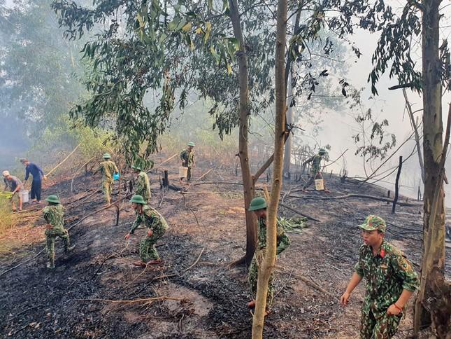 Cháy lớn thiêu rụi hàng chục héc ta rừng tràm ở Kiên Giang ảnh 2