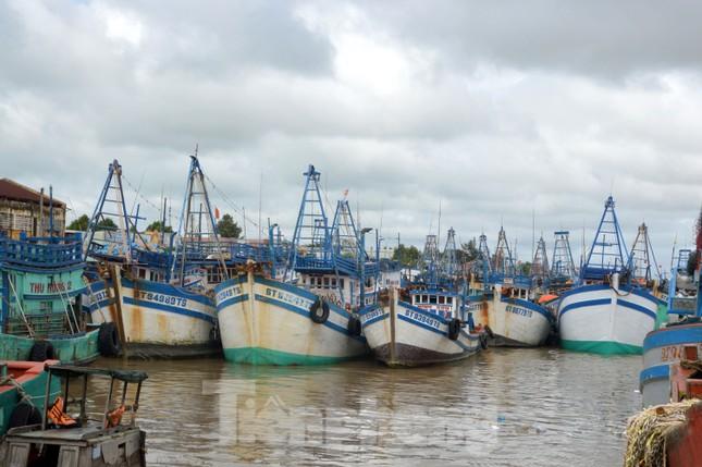 Nhiều tỉnh miền Tây cấm tàu, thuyền ra khơi để tránh bão ảnh 1