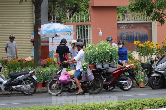 Chợ hoa Cần Thơ nhộn nhịp ngày 30 Tết ảnh 6