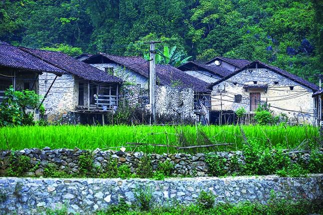 Một tua làng đá Hà Giang ảnh 6