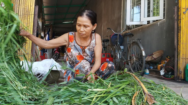 Bị thu đất lúa, nông dân sống bằng gì? ảnh 1