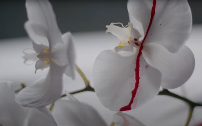 Giải mã loạt ẩn ý đằng sau những cảnh ngọt ngào của Gil Lê và nữ chính trong MV mới ảnh 2