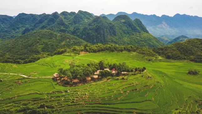 """Ngày Quốc tế về Rừng: Trải nghiệm 5 ngôi nhà cây """"độc nhất vô nhị"""" ở Việt Nam ảnh 1"""