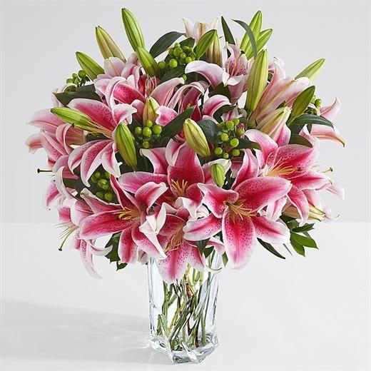 Những loại hoa được cắm nhiều ngày Tết nhưng lại chứa chất cực độc ảnh 3