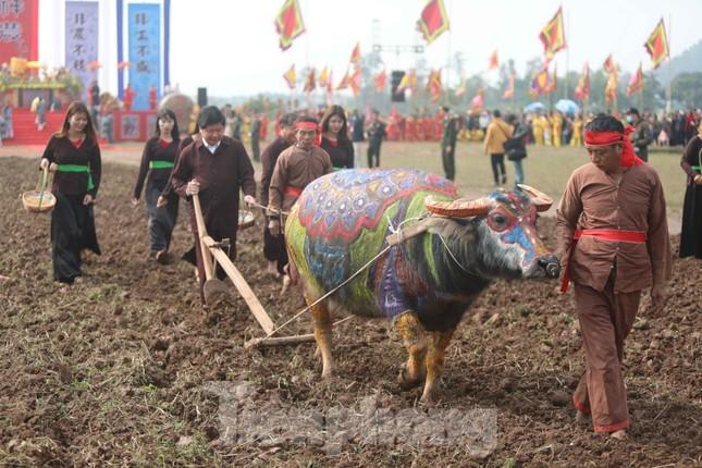 Người dân đeo khẩu trang xem 'Vua' đi cày khai hội Tịch điền Đọi Sơn ảnh 13