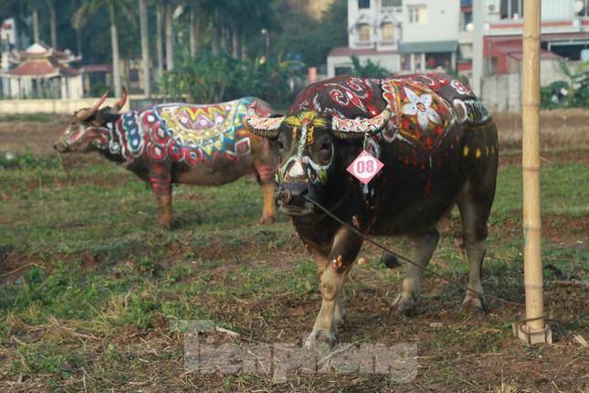 Người dân đeo khẩu trang xem 'Vua' đi cày khai hội Tịch điền Đọi Sơn ảnh 7