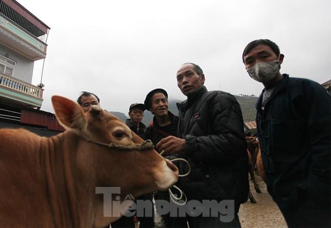 Lạc bước ở phiên chợ bò Mèo Vạc ảnh 9