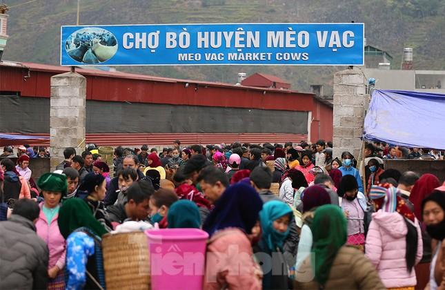 Lạc bước ở phiên chợ bò Mèo Vạc ảnh 1