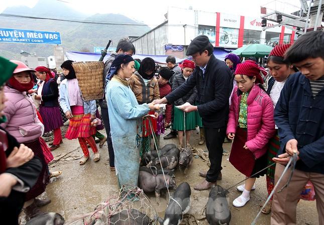 Cách chọn mua lợn 'có một không hai' ở chợ phiên Mèo Vạc ảnh 9
