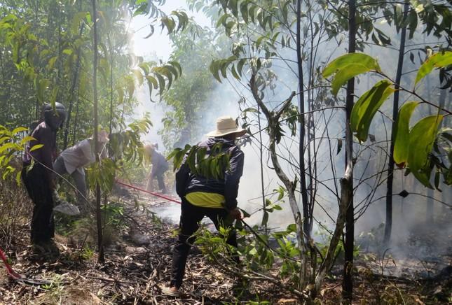 Lại cháy rừng dữ dội tại TT-Huế, biển lửa trùm lên 20ha cây lâm nghiệp tái sinh ảnh 2