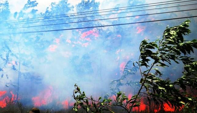Lại cháy rừng dữ dội tại TT-Huế, biển lửa trùm lên 20ha cây lâm nghiệp tái sinh ảnh 1