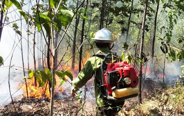 Lại cháy rừng dữ dội tại TT-Huế, biển lửa trùm lên 20ha cây lâm nghiệp tái sinh ảnh 3