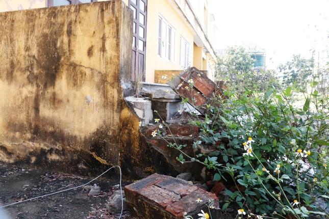 Chung cư 'chục tỷ' xây gần 10 năm ở Huế không biết làm gì, cây dại phủ như rừng ảnh 12