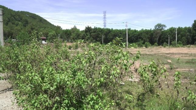 Dự án tiền tỷ 'mắc cạn', rác phế liệu tấn công khu dân cư, vây trạm y tế ảnh 8