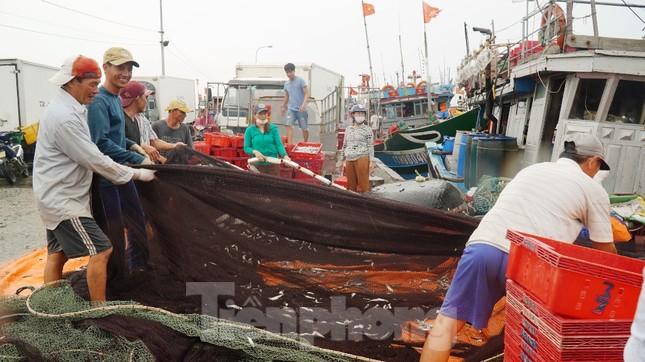 Ngư dân TT-Huế hối hả với những mẻ cá biển cuối cùng trước bão ảnh 6
