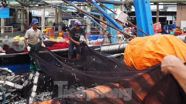 Ngư dân TT-Huế hối hả với những mẻ cá biển cuối cùng trước bão ảnh 3