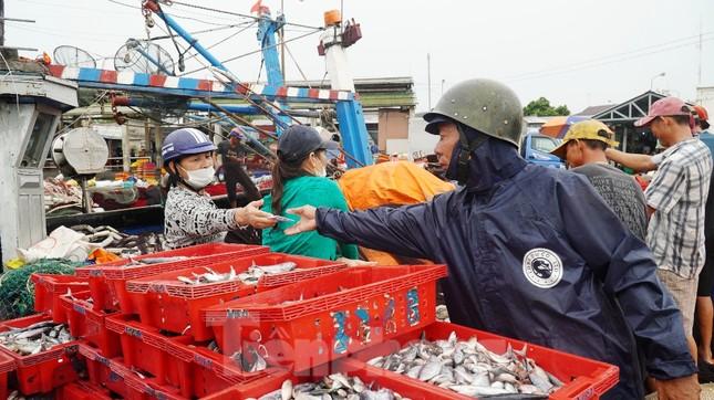 Ngư dân TT-Huế hối hả với những mẻ cá biển cuối cùng trước bão ảnh 5