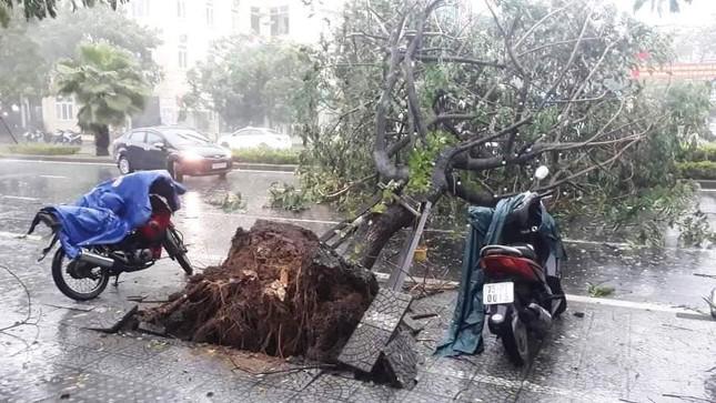 24 người thương vong do bão số 5 tại TT-Huế ảnh 2