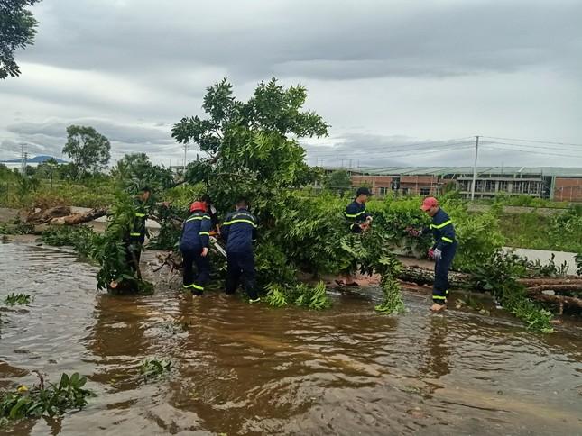 Gần 1.500 ĐVTN Huế miệt mài 'giải cứu' đường phố tắc nghẽn sau bão ảnh 5