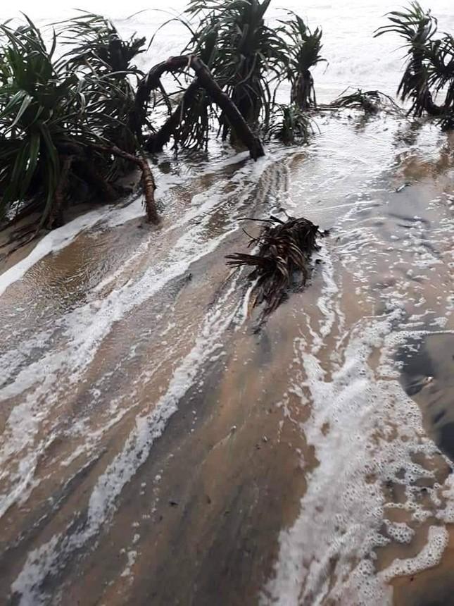 TT-Huế: Học sinh toàn tỉnh nghỉ học, hồ chứa 500 triệu m3 nhận lệnh khẩn xả nước ảnh 7