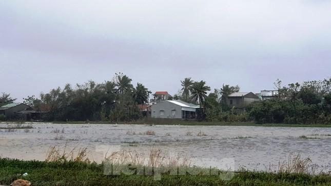 Gió giật mưa lớn, đường sá tại Huế không bóng người ảnh 13