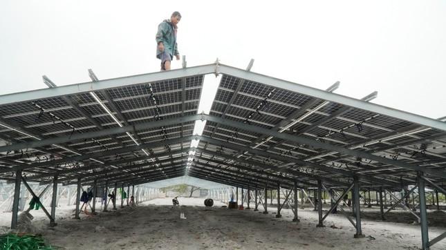 Rầm rộ làm trang trại 'điện mặt trời' ở TT-Huế: Nhiều cơ quan chức năng vào cuộc ảnh 1
