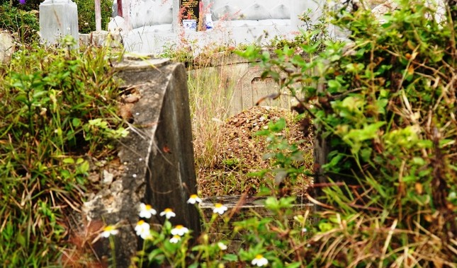 Tận mục nơi thuộc 'thế giới người chết' sắp thành công viên văn hóa ở Huế ảnh 9