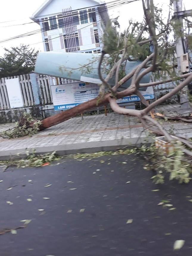 Hình ảnh Quảng Nam tan hoang sau bão số 9 ảnh 9