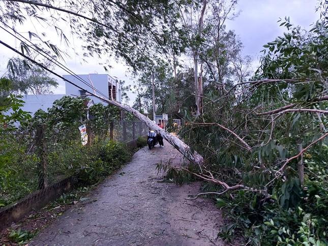 Hình ảnh Quảng Nam tan hoang sau bão số 9 ảnh 5