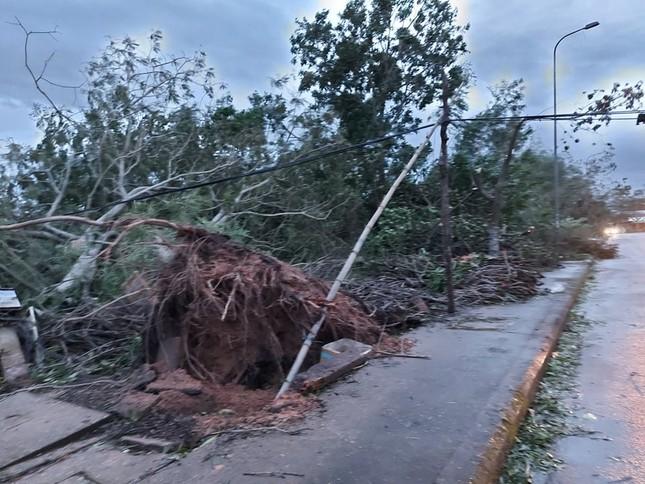 Hình ảnh Quảng Nam tan hoang sau bão số 9 ảnh 4