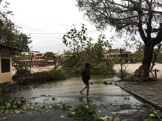 Hình ảnh Quảng Nam tan hoang sau bão số 9 ảnh 7