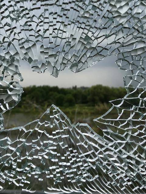 Biệt thự đại gia Cà Mau bị nã đạn: Công an mời 3 người bắn chim ảnh 1